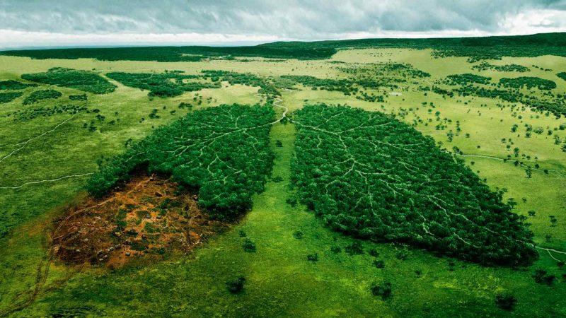 Спасите планету! Фото с сайта www.fullhdoboi.ru