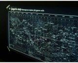 Святящаяся звездная карта