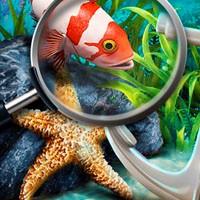 Игра Поиск предметов: Секреты моря онлайн