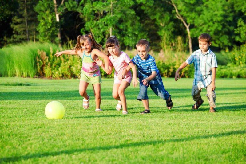 Игра как ведущая деятельность ребёнка