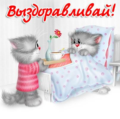 Котик заботится о кошечке, принося ей чай с цветком в постель