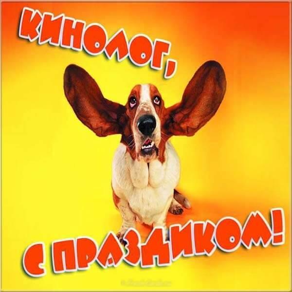 Красивые картинки День кинологических подразделений МВД России (День кинолога)