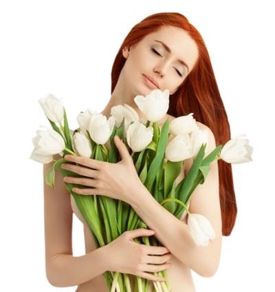 Цветы белые тюльпаны