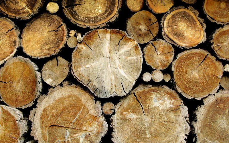 Вальщики леса тоже празднуют в этот день. Фото с сайта alphacoders.com