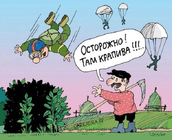 парашютист падает в крапиву