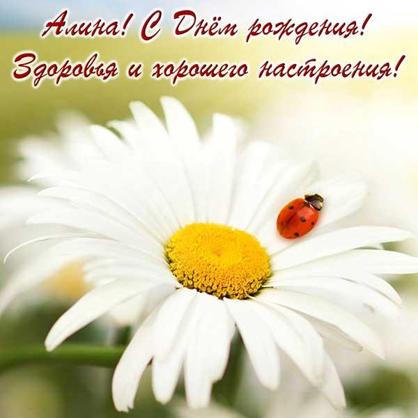 поздравления Алине_9