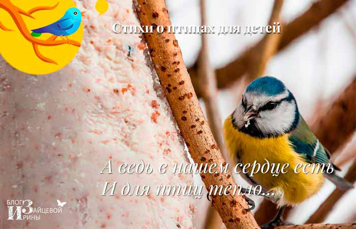 стихи о зимующих птицах