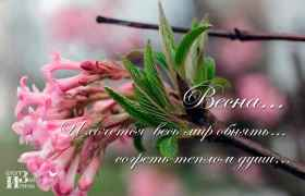 Весна... И хочется весь мир обнять... согреть теплом души...